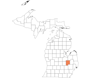 Image Result For Map Of Tuscola County Michigan